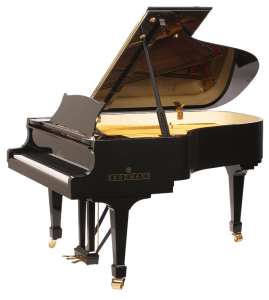 Black Brodmann piano side