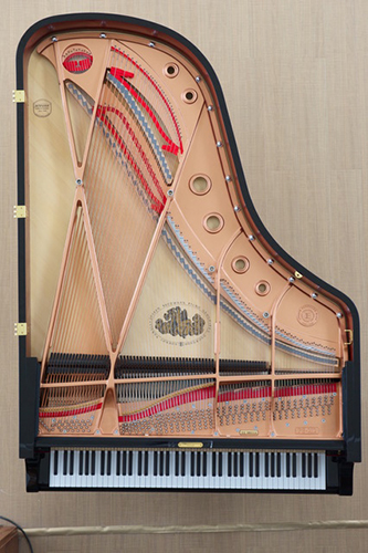 Piano Vertical View